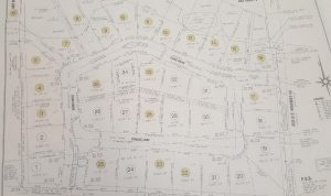 Plat Map of Chasewood with Lot Prices New